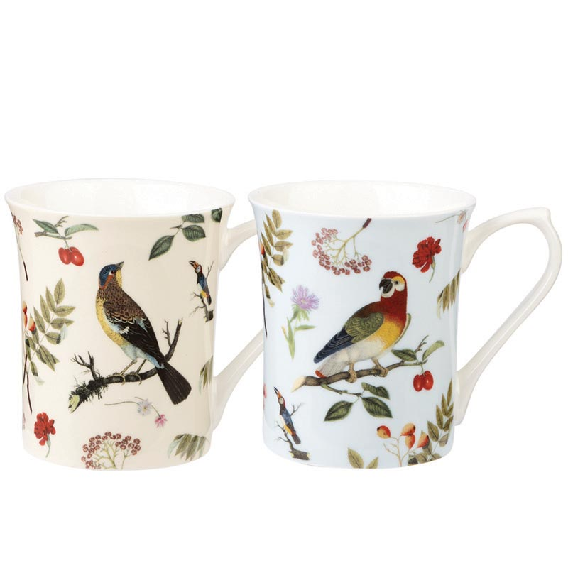 Curious Birds Assorted Bone China Royale Mugs
